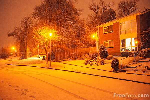 Picture of Snow in the evening - Free Pictures - FreeFoto.com