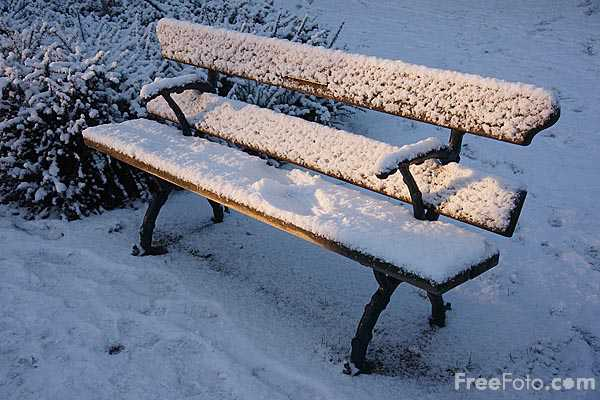 Picture of A park bench covered in snow - Free Pictures - FreeFoto.com