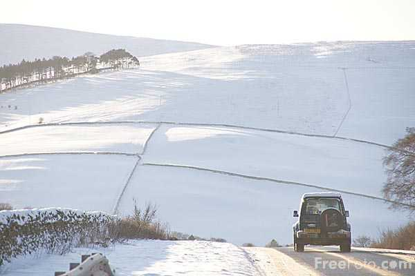 Picture of Winter scene in the Scottish Borders - Free Pictures - FreeFoto.com