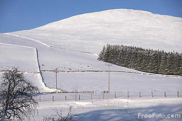 Picture of The Scottish Borders covered with snow during January 2010 - Free Pictures - FreeFoto.com