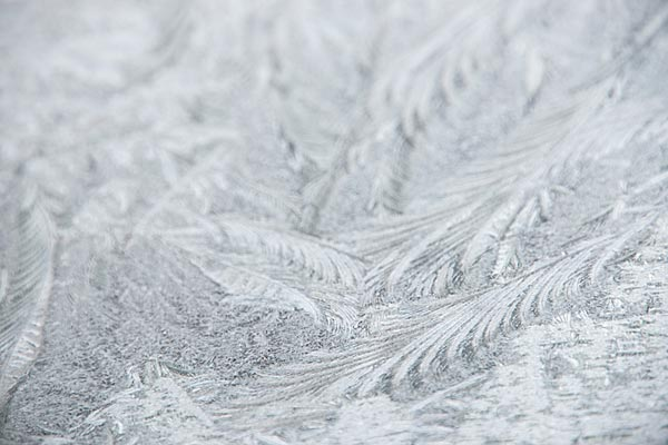 Picture of Frost covered window - Free Pictures - FreeFoto.com