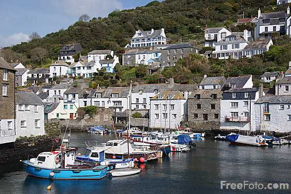 Picture of Polperro village and fishing port - Free Pictures - FreeFoto.com