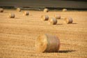 Image Ref: 9910-08-6671 - Straw Bales, Viewed 2591 times