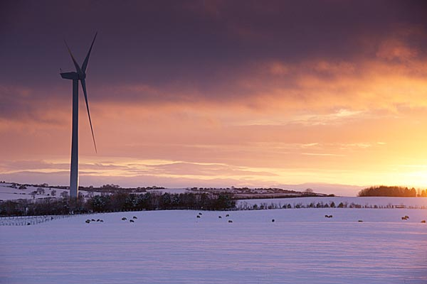 Picture of Wind Farm at Sunset - Free Pictures - FreeFoto.com