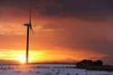 Image Ref: 9910-11-1723 - Wind Farm at Sunset, Viewed 2208 times