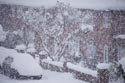 Snow covered street has been viewed 4148 times