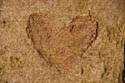 Image Ref: 9911-02-2905 - Wooden Heart, Viewed 1479 times