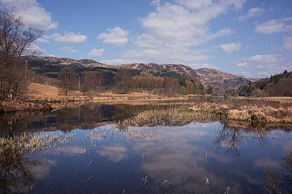 Picture of Loch Trool - Free Pictures - FreeFoto.com