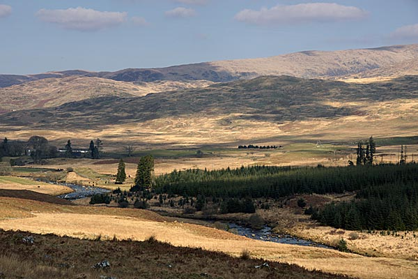 Picture of Galloway Forest Park - Free Pictures - FreeFoto.com