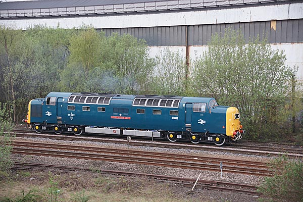 Picture of Class 55 Deltic 55022 Royal Scots Grey - Free Pictures - FreeFoto.com