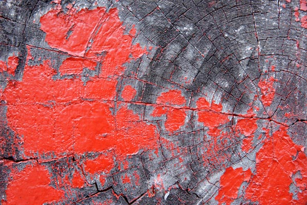 Picture of Red paint and wood grain - Free Pictures - FreeFoto.com