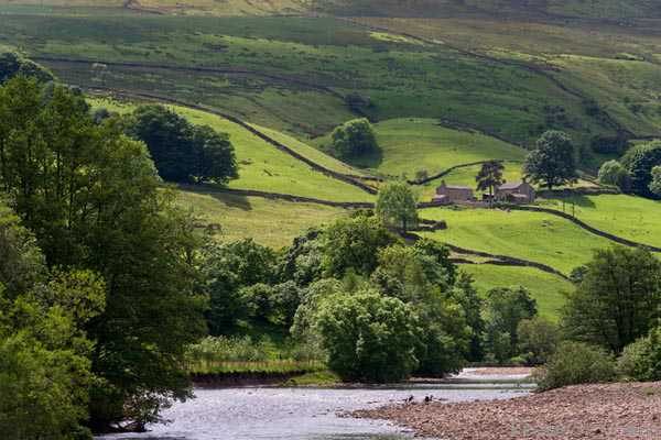 Picture of River Swale, Low Row, Swaledale - Free Pictures - FreeFoto.com
