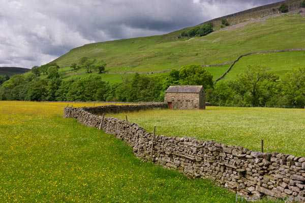 Picture of Meadow and field barns near Muker, Swaledale. - Free Pictures - FreeFoto.com
