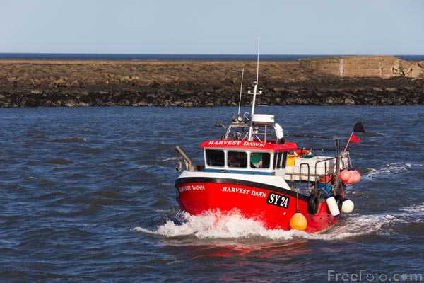 Picture of Fishing boat at Amble - Free Pictures - FreeFoto.com